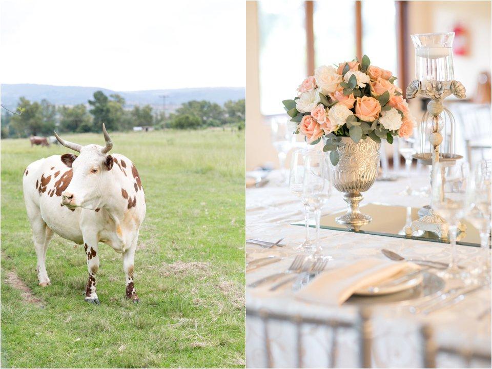 Oakfield farm - Corli en Hendre_0003
