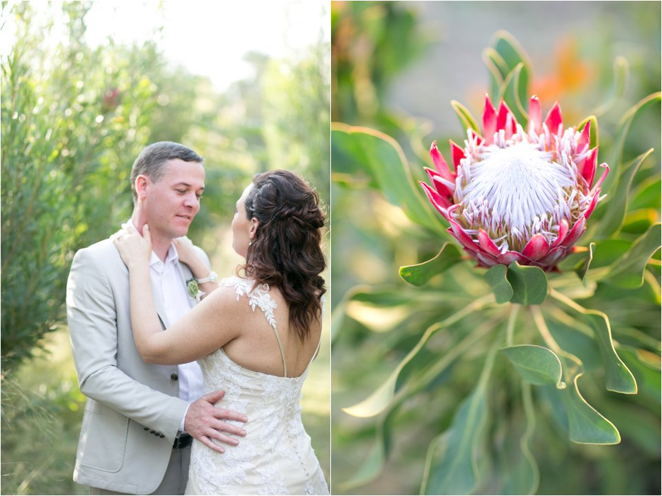 Harmonie Proteas - Cara and Jaco_0029