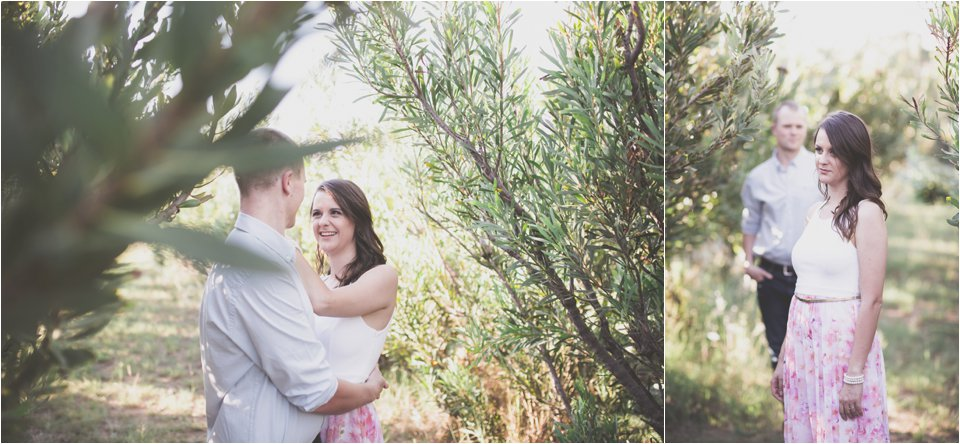 Harmonie Protea Engagement shoot_0005