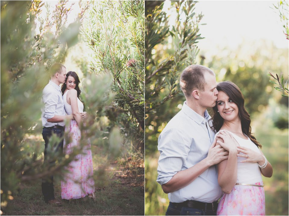 Harmonie Protea Engagement shoot_0008