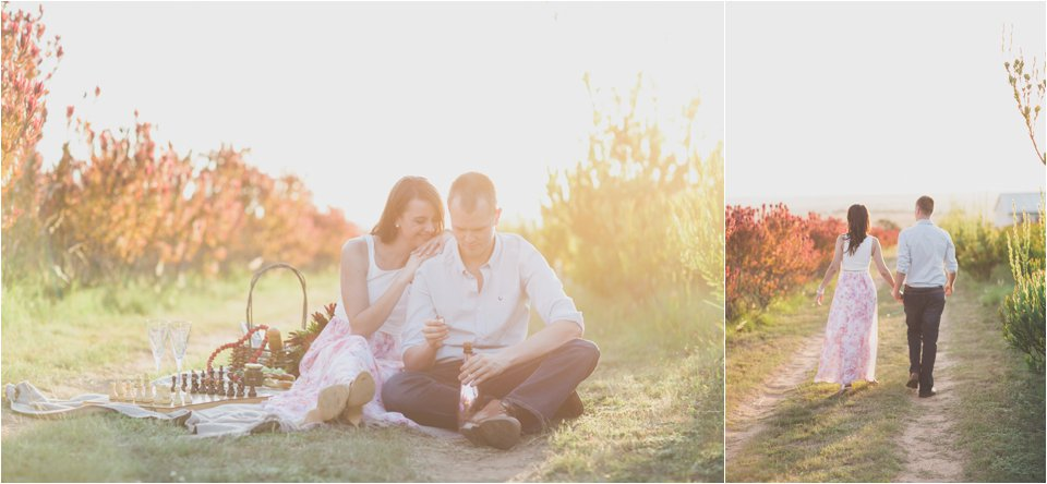 Harmonie Protea Engagement shoot_0017
