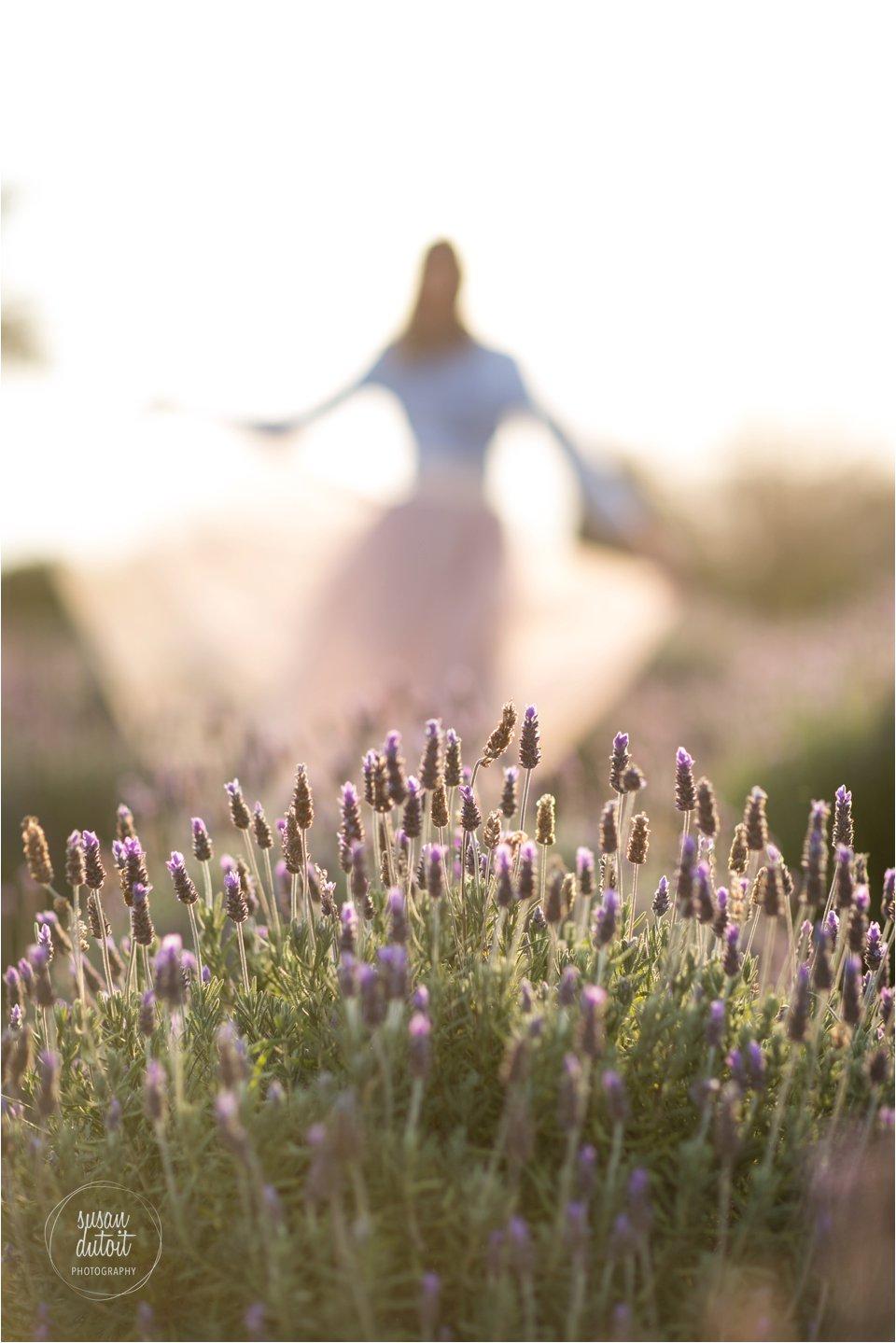 LavenderSA_0012