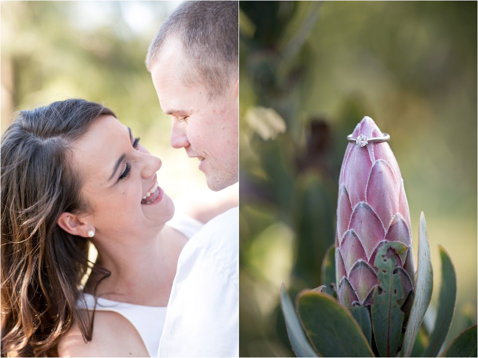 Harmonie Protea Engagement shoot_0004