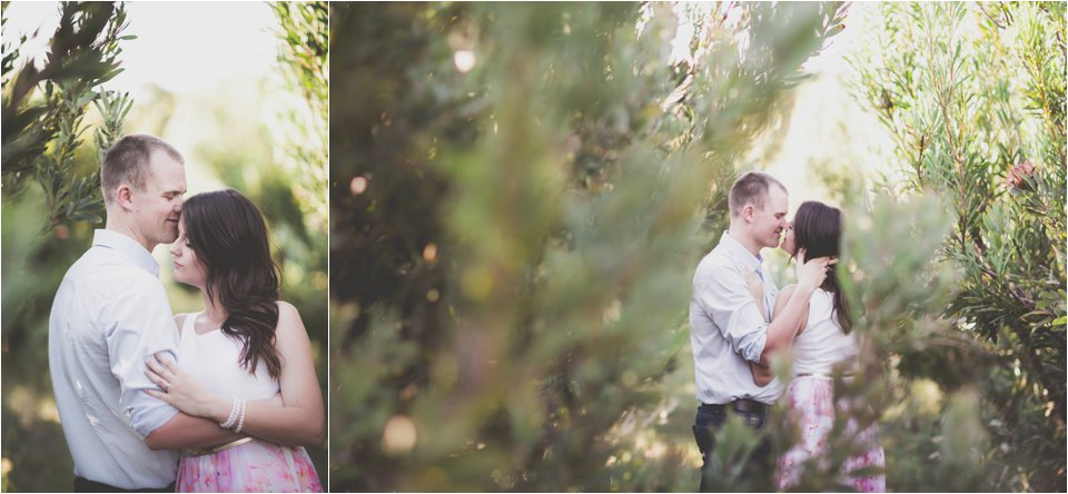 Harmonie Protea Engagement shoot_0007