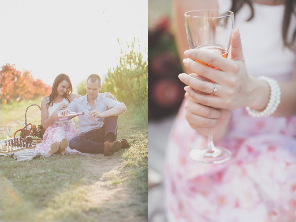 Harmonie Protea Engagement shoot_0013